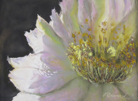 Nocturnal Cactus 3 - Soft Pastel Paintings by artist Donna Hahn Branson