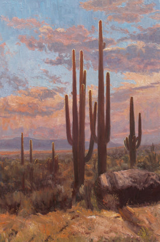 Saguaro Shadows - Oil Paintings by artist John Horejs