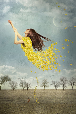 Forsythia Leviosa! - Photo Collage on Watercolor Paper Photography by artist Elisabeth Ladwig