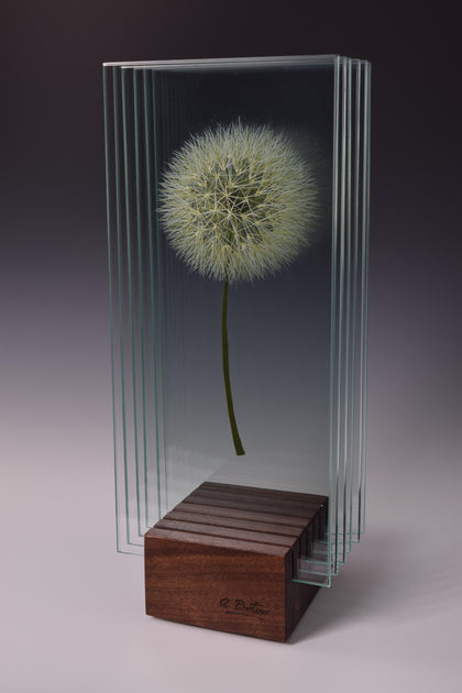 Find Your Wish - Glass sculpture Glass by artist Ana Maria Botero