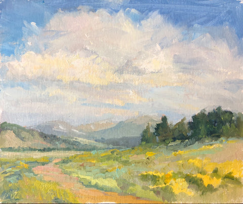 Summer Sky - oil  by artist Amy Evans