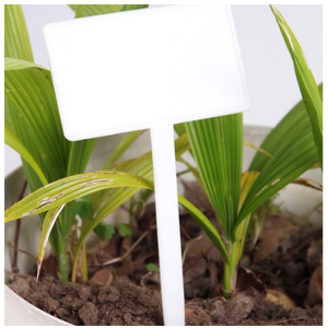 Angled Plastic Bed Markers by Harvest Horticulture NZ