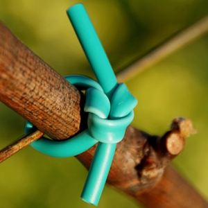 Flexible vinyl tubing for tying fruit trees & vines to trellising wires and structure