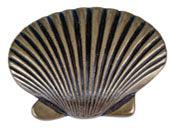 Sea Collection Burnished Bronze 2 In Clamshell Knob