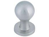 Successi Collection Brushed Nickel 0.75 In Nipple Knob