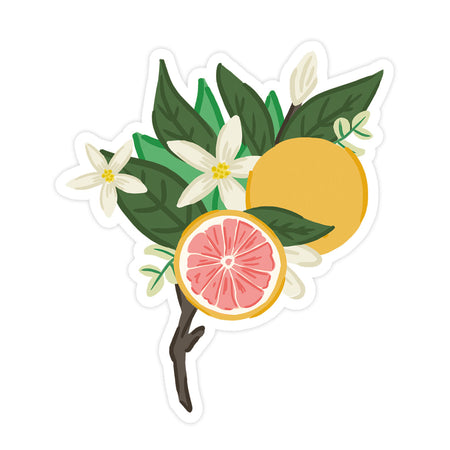Grapefruit Bloom Sticker - Bloomwolf Studio Sticker of a 1 Whole Grapefruit, 1 Sliced Grapefruit, White Flowers, Green Leaves