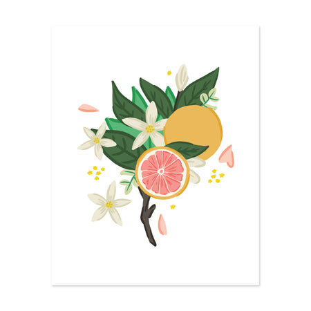 Grapefruit Bloom Art Print - Bloomwolf Studio Print With Grapefruit, White Flowers, Green Leaves