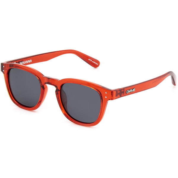 Carve Havana Gloss Crystal Red Grey POLARISED Lens Sunglasses
