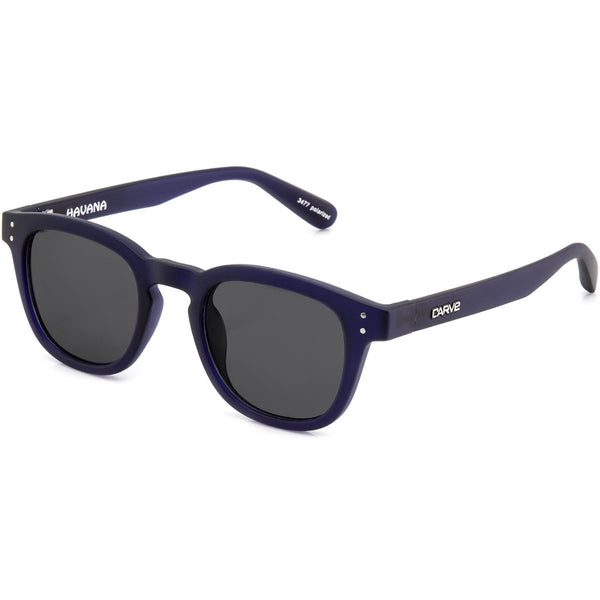 Carve Havana Matt Blue Purple Trans Grey Lens Sunglasses