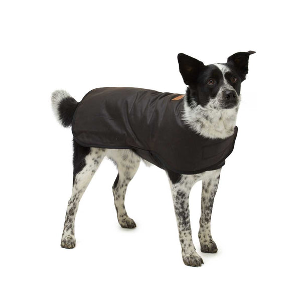 Didgeridoonas Brown Water Repellent Oilskin Wool Lined Dog Rain Coat Jacket