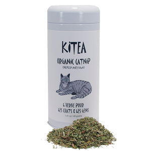 Catnip Herb Tea for People & Cats - Distinctly Tea Inc.