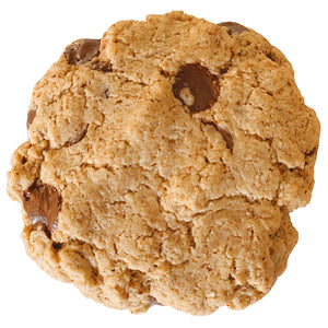 Chocolate Chip Cookie (12 PACK)