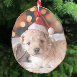 Wood slice hanging christmas tree decoration showing a dog wearing a santa hat