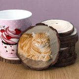 Wood slice coaster showing a ginger cat with it's eyes closed