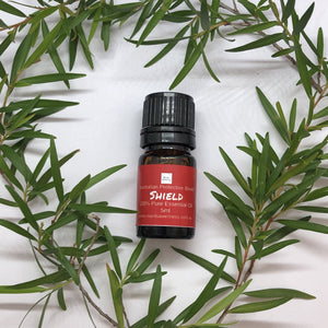 Essential Oil Blend- Shield - Australian Protective blend Essential Oil Blend Mantsa Wellness 5ml bottle