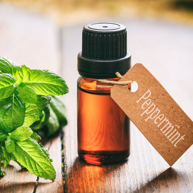 Australian Essential Oil - Peppermint Australian Selection Essential Oil Mantsa Wellness