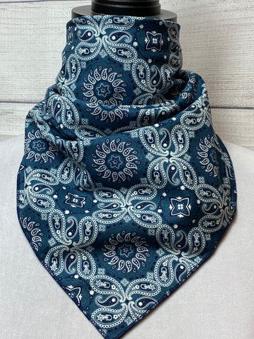 The Remi Paisley Cotton Bandana
