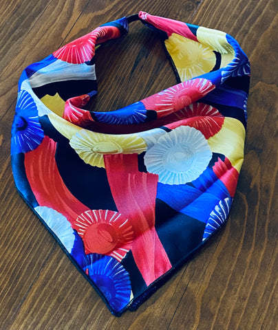 Show Ribbons Silk Kerchief