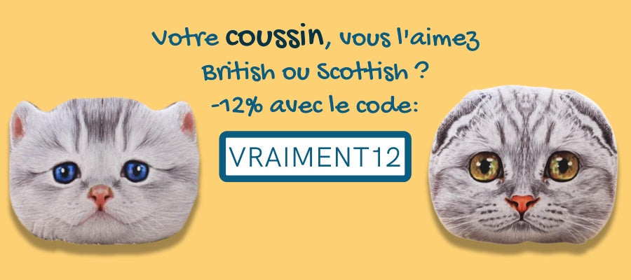 coussin chat british shorthair