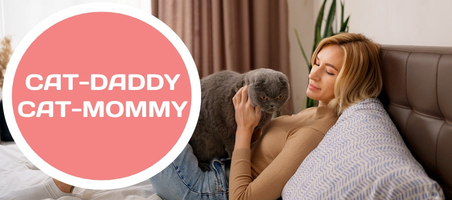 cat mommy cat daddy