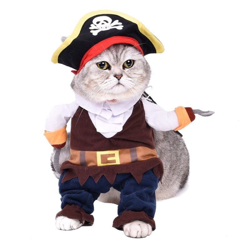 Déguisement chat Pirate