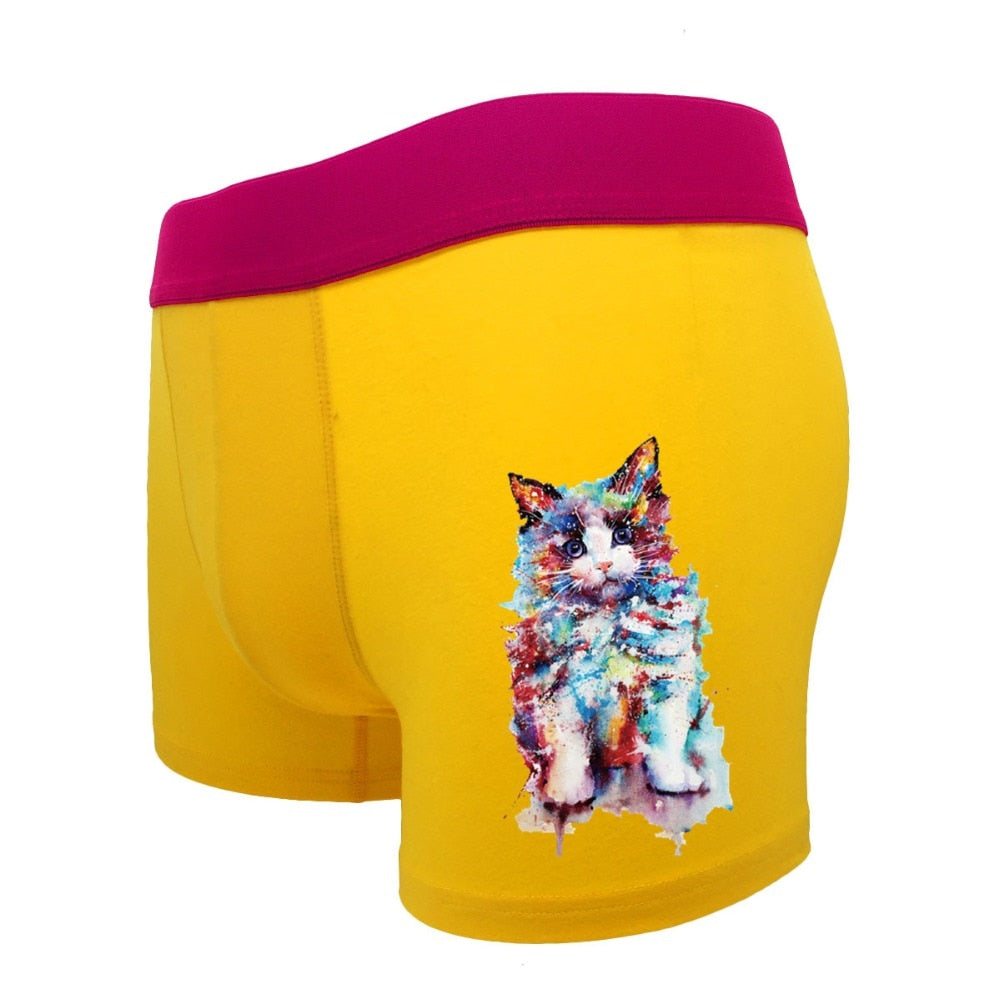 Boxer Chat Homme