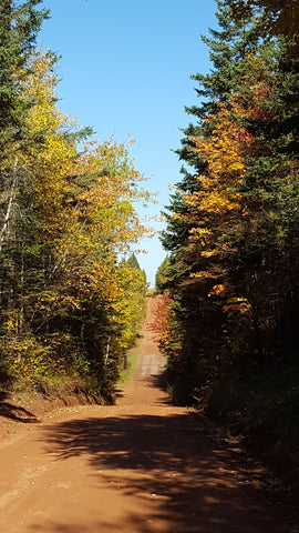 Backroads of PEI