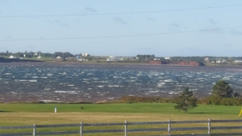 Choppy Waters at Darnley Basin