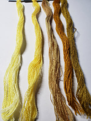 Hand Dyed Wool Thread Gold, Yellow Bundle - Gentle Art Wool Threads - 5 skeins of 10 yards