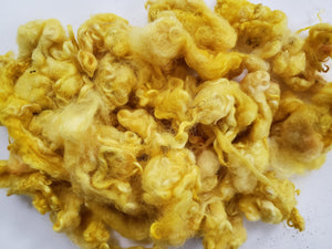 Fleece Locks - Shades of Yellow - Hand Dyed Textured Sheep Locks OOAK