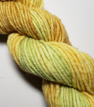 Wonder Woolen - LARCH - Fleece Artist Hand Dyed Yarn - Shades of Yellow-Green