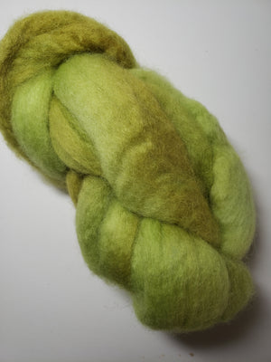 Corriedale Sliver - MOSS - Hand Dyed Fleece - Shades of Light Green
