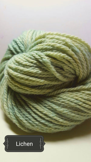Lichen - Hand Dyed Aran/Worsted Yarn for Rug Hooking