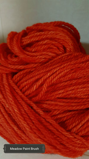 Meadow Paintbrush - Hand Dyed Aran/Worsted Yarn for Rug Hooking