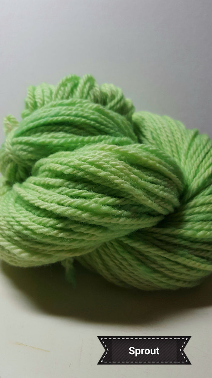 Sprout - Hand Dyed Aran/Worsted Yarn for Rug Hooking