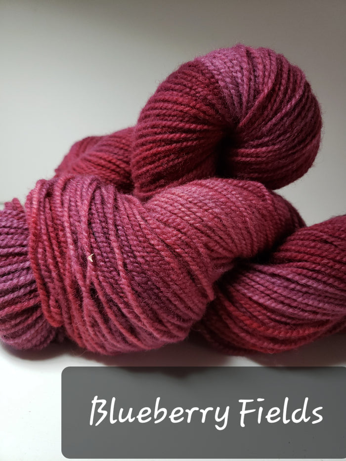 BLUEBERRY FIELDS - Hand Dyed Worsted Yarn for Rug Hooking - RSS150-4