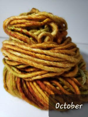 RSS154-2 - OCTOBER - Hand Dyed Chunky Yarn for Rug Hooking