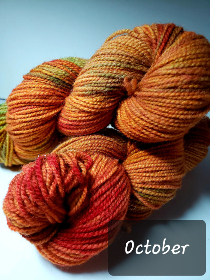 RSS154-4 - OCTOBER - Hand Dyed Worsted Yarn for Rug Hooking