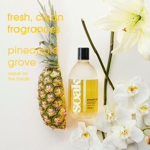 SOAK WASH  -  Pineapple Grove - Travel Size 90ml/3oz 18+ washes