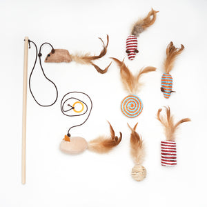 Assorted Cat Toys Set