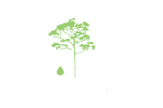 Rainforest Coffee Co. - Home of Pure Organic Shadegrown Coffee