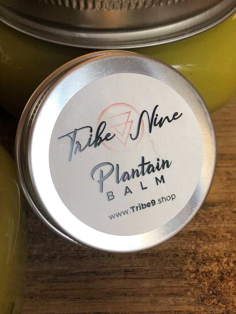 Plantain Healing Balm Infused with Lavender and Frankincense Oil