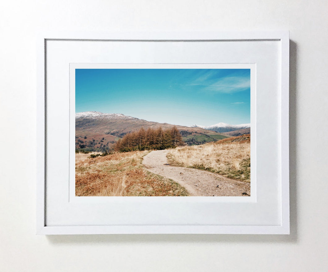 Loughrigg Fell #5 (Ltd Edition)