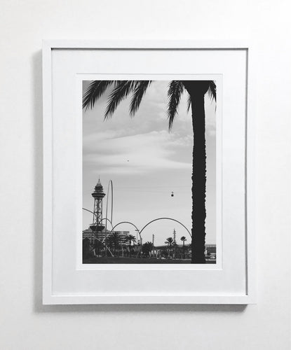 Barcelona Palm (Open Edition)