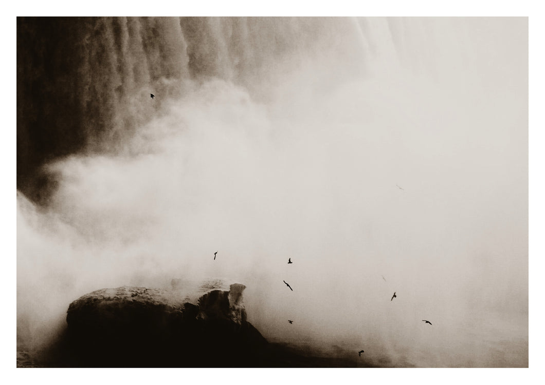 The Birds, Niagara Falls (Limited Edition)