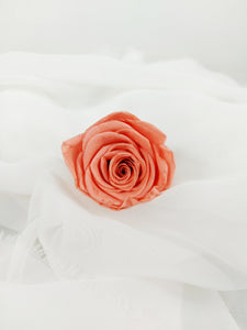 Preserved Rose Stem - Peach