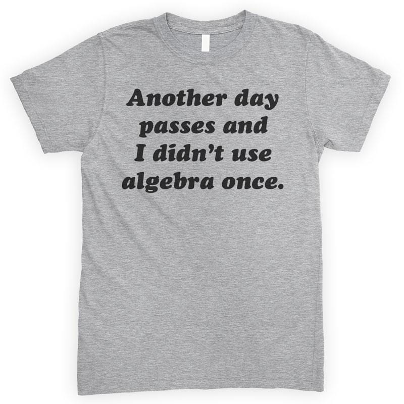 Another Day Passes And I Didn't Use Algebra Once Heather Gray Unisex T-shirt