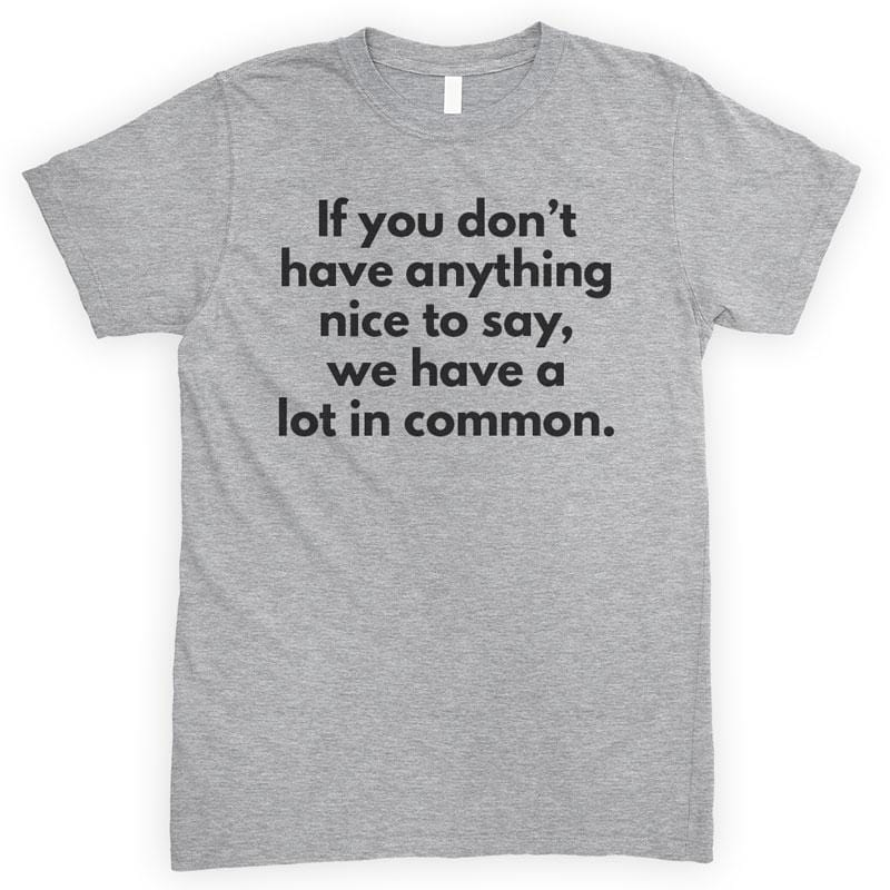 If You Don't Have Anything Nice To Say We Have A Lot In Common Heather Gray Unisex T-shirt