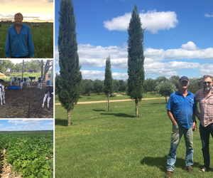 Rob's field notes - Barambah & MacIntyre Brook, April 2021