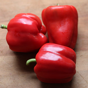 Capsicums, Coloured - 500g